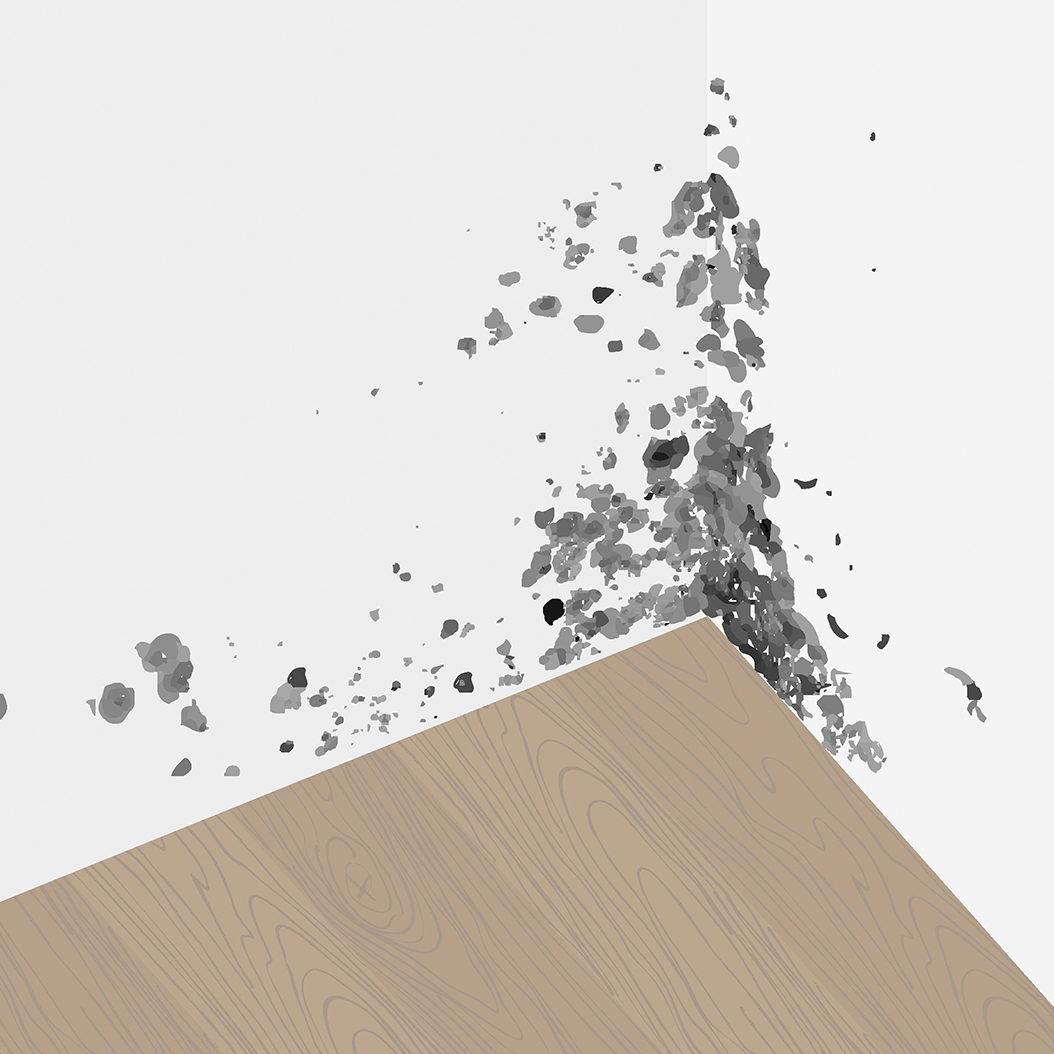 Mold-Damages-Public-Insurance-Adjuster-1200px